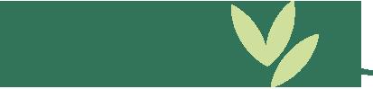 Webseite Klimke Staudenkulturen - Bild Gestaltungselement hellgrün